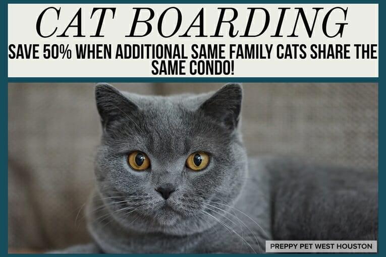 Preppy Pet West Houston Cat Boarding Discount
