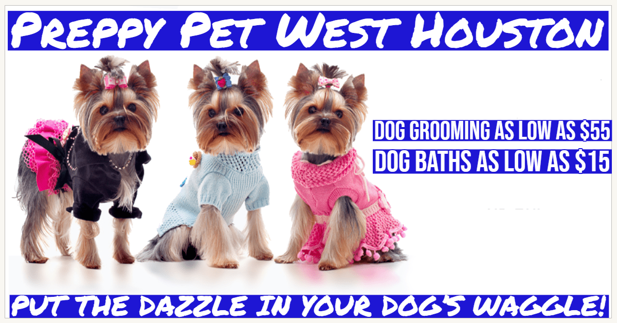 Dog Grooming Prices Houston, TX   Preppy Pet West Houston