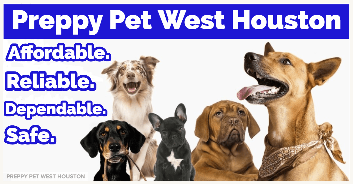 Preppy Pet West Houston | Dog Boarding Services