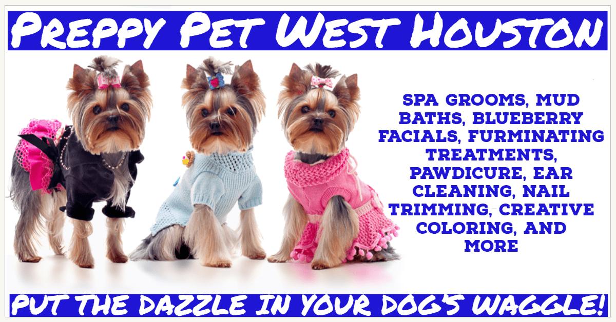 Dog Grooming in Houston, TX | Preppy Pet West Houston
