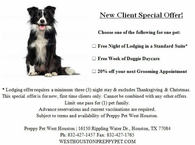 Preppy Pet West Houston dog boarding, cat boarding, doggie daycare & dog grooming coupon offers